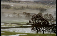 Misty Fells (SamKirk9) Tags: trees mist misty fog stone wall canon landscape countryside view yorkshire fells moors stonewall 1785mm dales yorkshiredales hawes askrigg wensleydale samkirk mooreland 400d samkirk9