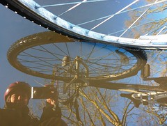008 2011 puddle (Margaret Stranks) Tags: camera reflection tree bike bicycle puddle helmet saturday 2011 365days 008365 8thjanuary