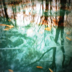 Mini-Diana shot (rpennington9) Tags: reflection chattanooga water lomo lomography tennessee lomographicsociety autaut lomographiccameras mtrtrophyshot minidianacamera