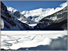 Lake Louise Canada (Ginas Pics) Tags: blue vacation snow canada fairytale frozen carving glacier offwhite iceart victoriaglacier fairmontchateaulakelouise visiongroup internationalicecarvingcompetition frozenlakelouisecanada gettyvacation2013