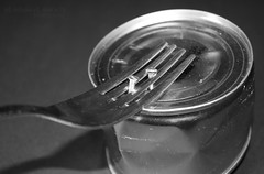 Back ★ (eL reEem eL sro0o7e ♥) Tags: life the unexcpected
