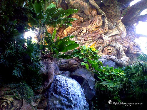 102320091276-WDW-DAK-Tree-of-Life-waterfall