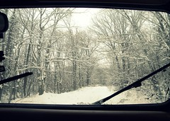 Black Ice (BoomBoxBecc2) Tags: trees winter mountain lake snow ice window leaves car clouds island mirror frozen woods jeep path branches newengland rearviewmirror trail snowing dashboard windshield offroading eastcoast snowytrees blackice snowybranches snowcoveredbranches fozenlake windshieldwhipers