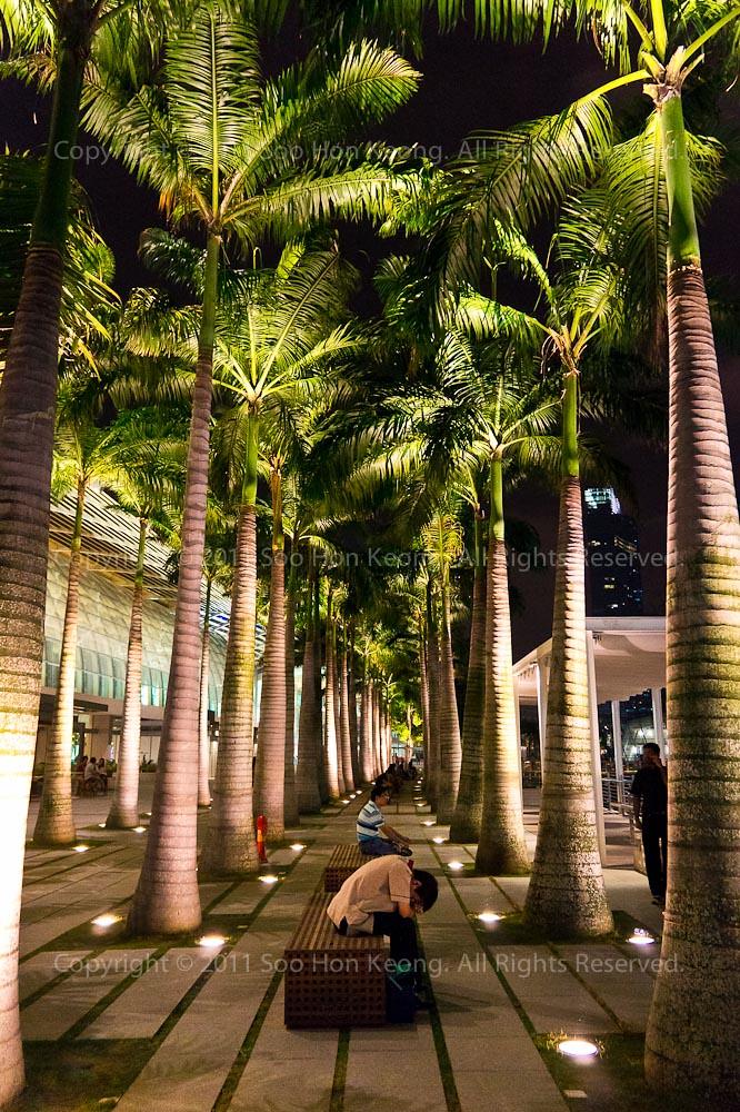 Contemplating @ Singapore