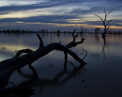 IMG_9931 (Bianca Ho) Tags: lake pamamaroo