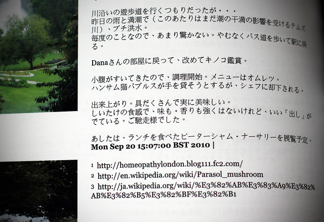 Japanese sentences in Blurb book.