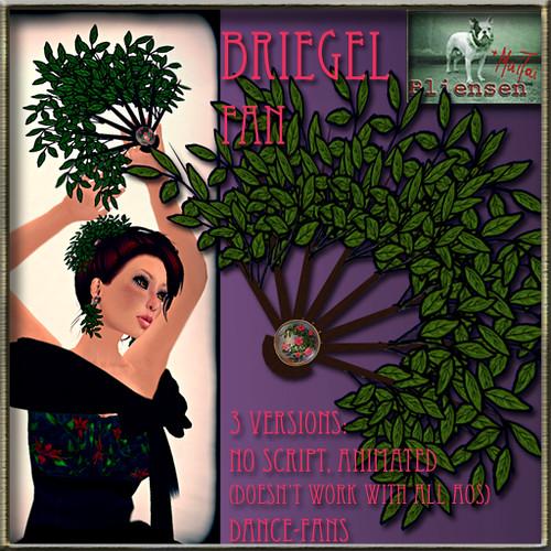 Bliensen + MaiTai - Briegel-Fan