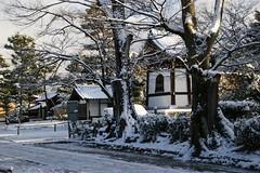 (nobuflickr) Tags: snow japan kyoto      kenninjitemple