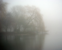 The morning is a reflection of yourself (Magic Theatre [OFF}) Tags: water fog grey grigio damm acqua vatten gr dimma nebia
