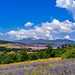Landscape Provence