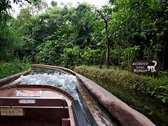 2016.05 Singapore River Safari 0005 (marcin matula) Tags: 201605 singapore nightsafari
