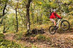 Fun Mtb Jumping (Fabrizio Malisan Photography @fabulouSport) Tags: boschi bosco woods wood trail fun outdoor outdoors sports sport jumping jump bici velo riding rider biker ride biking mountainbiking mountainbike vtt mtb