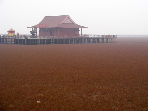 Panjin Red Beach, Liaoning, China
