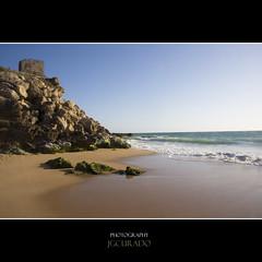 (jgcurado) Tags: sun sol beach stone landscape faro mar sand trafalgar playa paisaje arena piedras algas atlantico caosdemeca jgcurado jorgegcurado