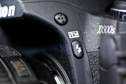 Nikon D7000 vs D300s vs D90 macro lens