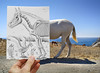 Pencil Vs Camera - 40 (Ben Heine) Tags: summer cactus horse bird art window grass animal pencil neck paper skeleton cheval freedom fly poem different hand body surrealism details horizon tail main wing creative donkey bluesky os romance structure dessin greece vision illusion destiny anatomy frame bones romantic series concept seethrough crayon icarus passage xrays biology papier herb oiseau cadre mykonos insight mule equine imagery aile crosshatching âne icare mulet 4thdimension squelette voler theartistery halfreal ossement petersquinn benheine drawingvsphotography samsungimaging nx10 pencilvscamera imaginationvsreality