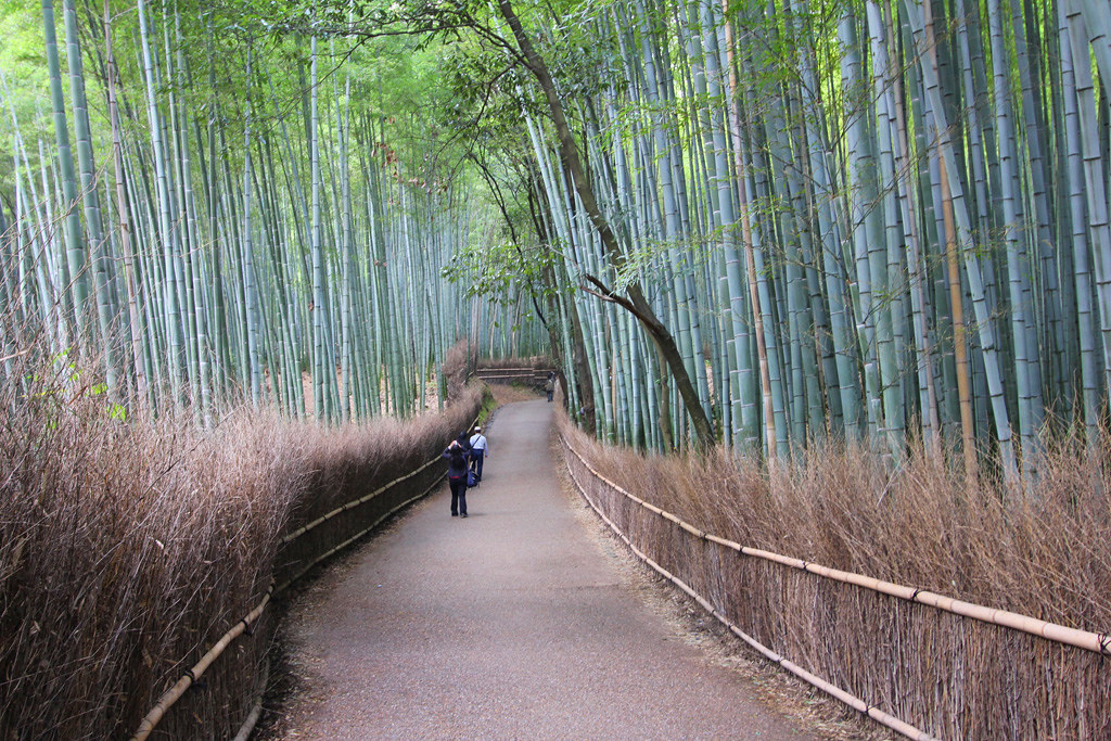 Kyoto, the city of Japanese traditions and culture Part3 (10)