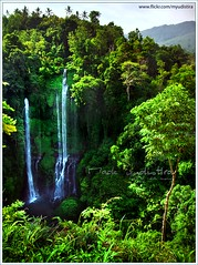 Start Line's Scenery (myudistira) Tags: bali work waterfall scenery photographer air north culture freelance terjun adat budaya balinese fotografer unik singaraja yudis sekumpul myudistira madeyudistira yudist