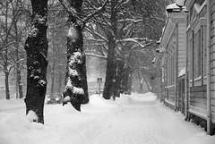 (Sameli) Tags: street city winter snow suomi finland helsinki