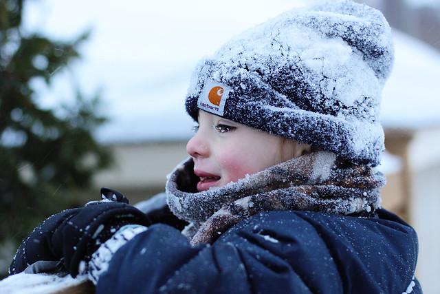 snow1.johan