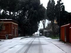 Bianco su strada (Clear V) Tags: snow rome roma gelo alberi strada italia neve inverno statua freddo vento lazio orme ghiaccio desolazione scia anzio orma ovattato torpore