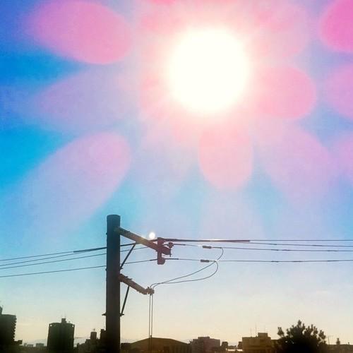 今日の写真 No.106 – 昨日Instagramに投稿した写真(4枚)/iPhone4 + Photo fx、Phototreats
