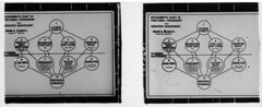 "Stereoscopic image of ""Diagrammatic chart..."