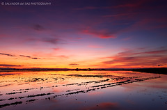 Glorious sunset af the rice fields III (and last) ... I'll be off for a while, my camera fell in the sea and it's death. (Salva del Saz) Tags: park parque sunset water canon atardecer eos twilight agua raw rice angle natural dusk wide lee fields gran crepusculo filters angular ultra ocaso marshland campos arroz flooded albufera extremo inundado efs1022mm marjal singleraw singhray 40d salvadordelsaz salvadelsaz reversegnd