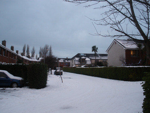 Snowy Seapoint Court