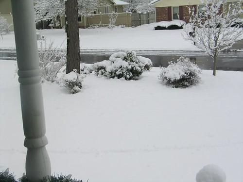 Doo...Doo...Doo looking out my front door...