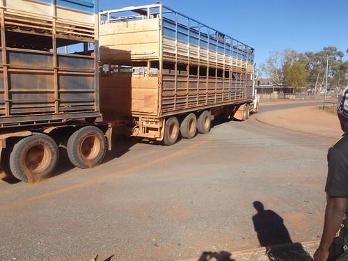 cattletruck 2