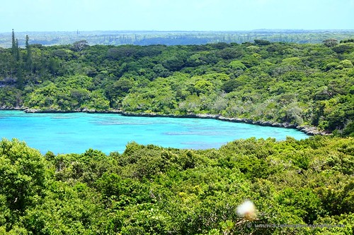 View from the top of Lifou