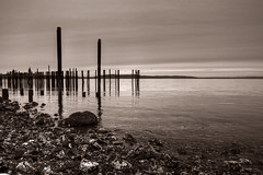 Forgotten Pier Piles (clee130) Tags: travel blackandwhite bw white black travelling water clouds canon lens landscape blackwhite washington rocks cloudy columns sigma sound wa pugetsound tacoma hdr highdynamicrange puget 1850 1850mm sigmalens 40d canon40d