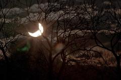 L'éclipse partielle du 4janvier