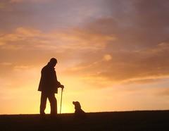 Silhouette at sunrise (cocopie) Tags: silhouette sunrise john rona