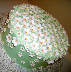 Blossom Cake (Cake Lover (Sam)) Tags: cake blossom mudcake vanilla citrus buttercream