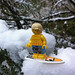 LEGO Collectible Minifigures Series 2 : Surfer