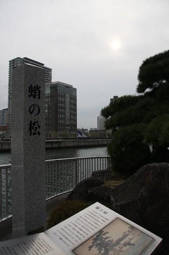 蛸の松 / Takonomatsu
