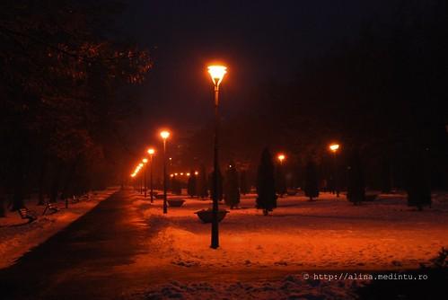 vara cu rolele, iarna, la plimbare