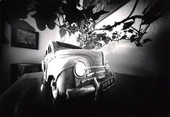 4CV Stnop (joel lintz) Tags: bw white black coffee car noir box joel voiture nb pinhole et blanc bote 4cv stnop lintz