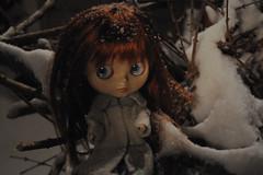 Night Snow 2 - Aubrey