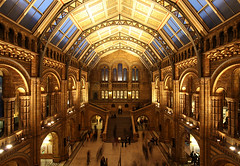 London National History Museum (david.bank (www.david-bank.com)) Tags: uk england london museum architecture canon europe interior culture shift kensington atrium tilt tse nationalhistory 17mm theredpod