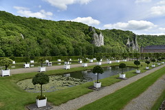 Les orangers en bac bi-centenaires (Flikkersteph -4,000,000 views ,thank you!) Tags: springtime garden waterpool fountain tranquillity landscape nature footpaths reflecting wonderful hills slopes cloudy shadow trees foliage castle hastire wallonia belgium