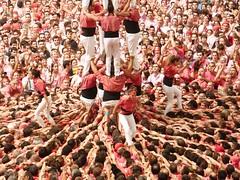 z Castells conc Dmg 2016 (286) (calafellvalo) Tags: castellscastellerscastelleratarragonatapcollespiascalafellvalotowerscastlesworldheritagevalorpatrimonio concusdecastells concurscasteller concursdecastellsdeldiumenge concursdecastellsdeldiumenge2016 tap tarracoarenaplaza tarragona catalonia spain catalunya calafellvalo castellers castells castellera humantowers humancastles worldheritage patrimonioinmaterialdelahuanidad xiquetsdereus castellersdesabadell nensdelvendrell castellersdelaviladegrcia capgrossosdematar castellersdebarcelona castellersdesants xiquetsdetarragona collajovesxiquetsdevalls collajovexiquetsdetarragona collavellsdelsxiquetsdevalls castellersdevilafranca verds rosats liles cultura tradicin folklore tresdedeu quatradedeu torredevuit plazadetoros elmayorespectculohumano mediteranean mediterrneo fuerza valor rauxa aficin tocarelcielo pia pinya chearux redbull
