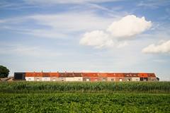 Suburbia (Nuuttipukki) Tags: suburbia living houses minimalism green red sky terraced reihenhaus belgium belgien vorort felder