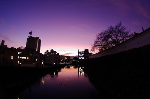 甲府舞鶴城夕景
