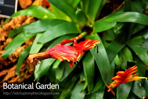 botanical-garden-(3)