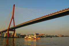 Shanghai - Yangpu Bridge (cnmark) Tags: china bridge ferry port river geotagged boat barco ship shanghai harbour vessel cable line nave   brcke schiff barge fhre stayed huangpu navire   yangpu yangpubridge  navo allrightsreserved   xiening mygearandmepremium mygearandmebronze mygearandmesilver mygearandmegold mygearandmeplatinum mygearandmediamond  ringexcellence dblringexcellence tplringexcellence geo:lat=31256432 geo:lon=121539917