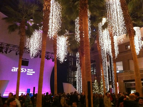 Lights and Palm Trees