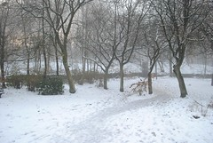 A walk through the Summerseat woods (zawtowers) Tags: trees winter cloud white mist cold beautiful forest bury december path walk low freezing lancashire well serene rammy ramsbottom trodden unspoilt summerseat bl0